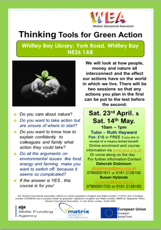 green thinking tools whitley bay